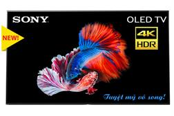 Tivi Sony OLED 65 inch 4K HDR KD-65A1